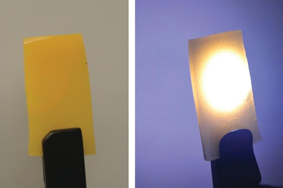 Зеленый люминофор с нанокристаллами перовскита, смешанный с люминофором красного цвета, выглядит желтым при нормальном освещении (слева). При возбуждении синим лазером, комбинация люминофора производит белый свет (справа)